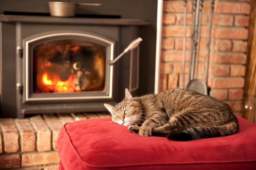 http://www.harveker.com/2013/12/01/when-in-winter-hibernate/