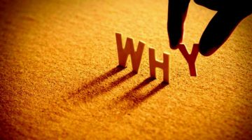 why-word-wood-alphabet-find your why feature-